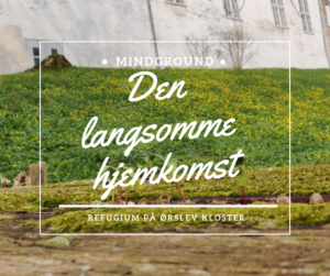Ørslev Kloster Arbejdsrefugium Betinna Sidor